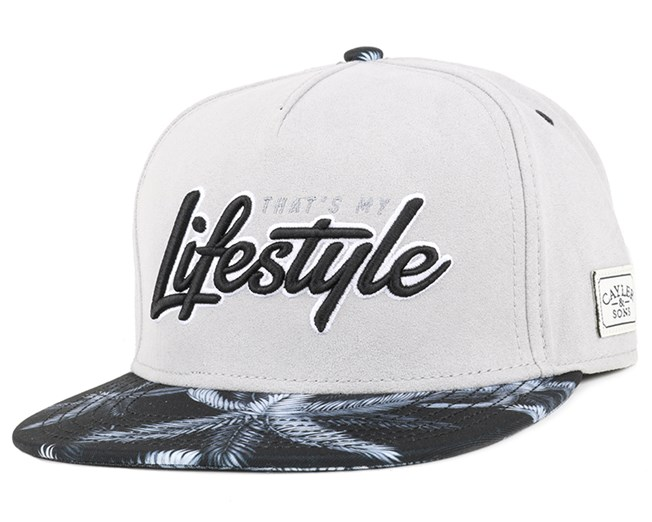 Lifestyle Grey/Black Snapback - Cayler & Sons