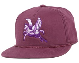 The Lore Purple Snapback - Coal