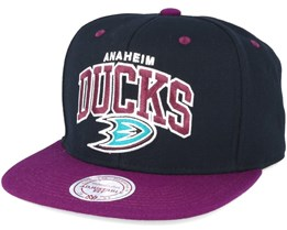 Anaheim Ducks Team Arch Black/Purple Snapback - Mitchell & Ness
