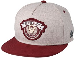 Bright Minds Sand/Maroon Snapback - Cayler & Sons