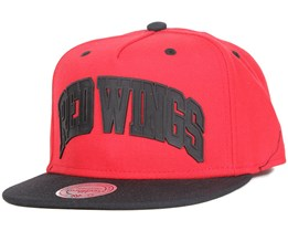 Detroit Red Wings Alleyoop Snapback - Mitchell & Ness