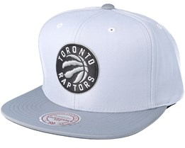 Toronto Raptors 2T Plus Series Grey Snapback - Mitchell & Ness