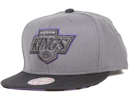 Team Vivid LA Kings Grey Snapback - Mitchell & Ness