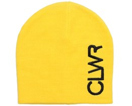 Logo Burst Beanie - Colour Wear