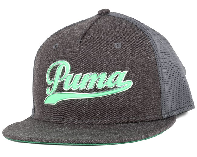 Script Grey Snapback - Puma
